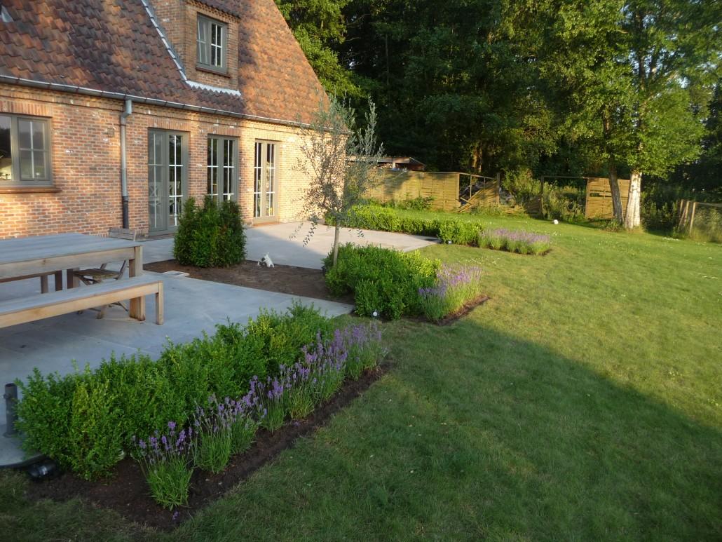 Bram tuinen tuin aanleggen for Tuin aanleggen